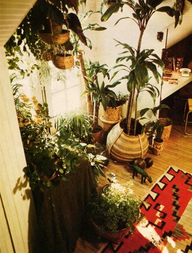 Favorite House Plants, Better Homes & Gardens,1976 B