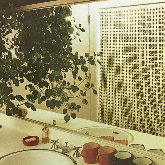 Foliage House Plants, 1972
