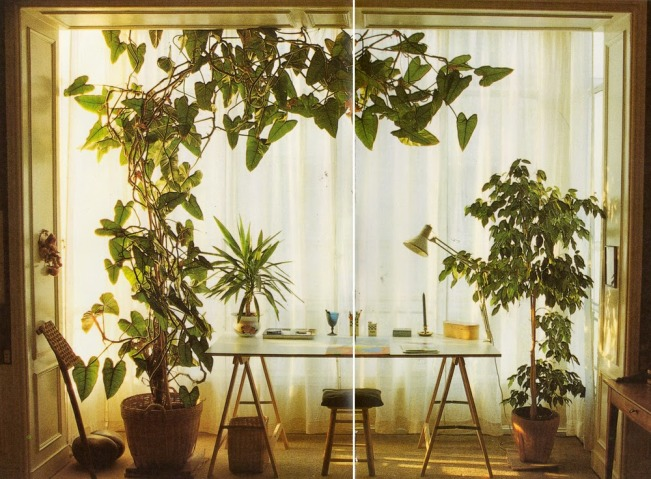 Terence Conran_s Decorating with Plants | Susan Conder 1986 A
