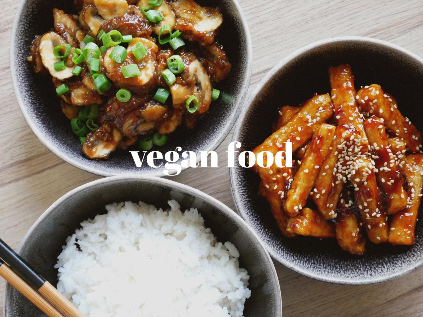 cat vegan food